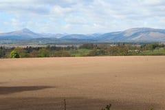 Field near bucklyrie Royalty Free Stock Photo