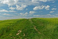 Landscape near Erfurt with path to the sky and nowhere. Field near Erfurt in thuringia royalty free stock image