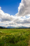 Field near home in mountains Royalty Free Stock Photography