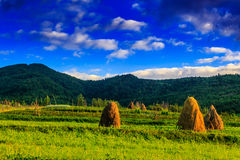 Field near home. Stack of hay on a green meadow in the mountains in the morning under a blue summer sky Royalty Free Stock Photo