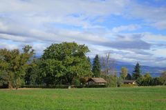 Field near Leman Lake in french Alps, Europe. Stock Photo