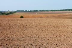 Field near the village Royalty Free Stock Photo