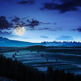 Field near village in mountain at night Stock Image