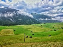 Field in Obertilliach, Austria Stock Photos