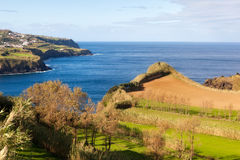 Field at the ocean coast, Azores, Portugal. Cultivated land with grass at the Atlantic ocean coast, San Miguel, Azores, Portugal Royalty Free Stock Images