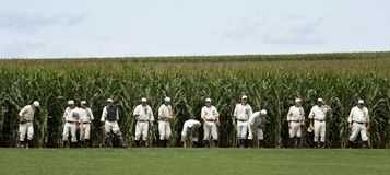 Free Field Of Dreams Stock Photography - 156427272
