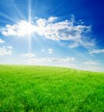 Field Of Green Grass And Blue Cloudy Sky Royalty Free Stock Image