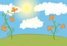 Field with orange flowers, blue sky with clouds Royalty Free Stock Photos