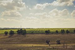 Field outside the city Royalty Free Stock Image