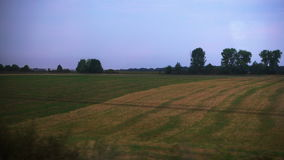 Field outside the window the train. Travel by train across the country stock video
