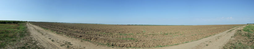 Field panorama. Black arable soil at autumn after harvest Royalty Free Stock Image