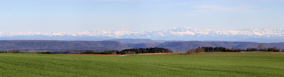 Field panorama view with the Alps mountain Royalty Free Stock Photo