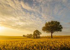 Field after passing storm. The fishing boat,Poland The Baltic Sea Royalty Free Stock Photos