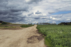 A field path leading between the bows. Field trip to the farm, forest and clouds Stock Photography
