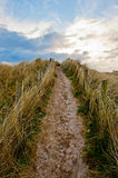 Field path under blue sky in Ireland Royalty Free Stock Photos