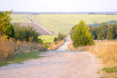 Field path in warm evening style, idyllic landscape, peaceful ba Stock Photography