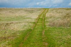 Field with path Stock Photography