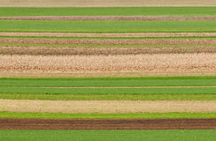Field Patterns Stock Image