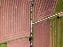 Field patterns in the summer royalty free stock photos