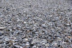 Field of pebbles - Ruegen Firestones Stock Images