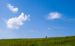 Field with people Royalty Free Stock Photos