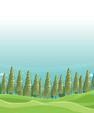 A field with pine trees. Illustration of a field with pine trees Royalty Free Stock Image
