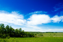 Field and plain landscape Stock Photos