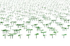 Field with planted sprouts 3d illustration Stock Photos