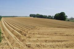 field ploughed στοκ φωτογραφία