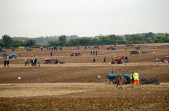 Field of Ploughing Competitors Royalty Free Stock Photos