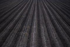 field plowed Στοκ Φωτογραφία
