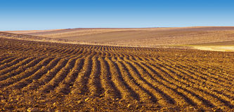 Field of Plowed Furrows Stock Photography