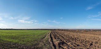 Field plowed half Royalty Free Stock Photos