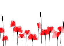 Field of Poppies. Red poppies on a background of white Royalty Free Stock Photos