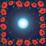 Field of poppy flowers. Moon on the sky and field of poppy flowers Stock Image