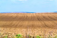Arable land prepared for planting. Field prepared for planting grain, corn or sunflower Royalty Free Stock Photo