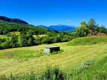 A field in the  Pyrenees in France. On the way to Montsegur, a Cathar castle, in France. Green fields and blue mountains in the background Stock Photography