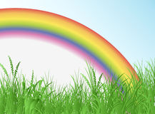 Field with rainbow Stock Photography