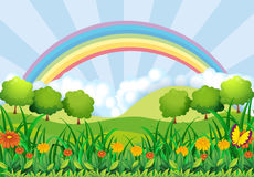 The field and the rainbow. Illustration of the field and the rainbow Royalty Free Stock Images
