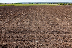 Field ready for seeding Stock Image