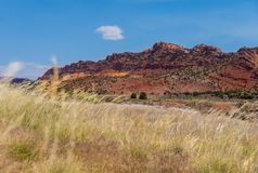 Field and red rock formation in arizona, usa road trip summer royalty free stock photos
