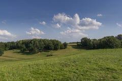 Field in the region of hallertau, Bayern (germany) Stock Photo