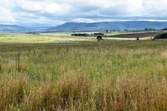 Field and the rest. A landscape situated between Dundee and Vryheid in Northern KZN Stock Photography