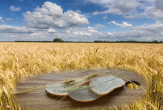 Field with ripening cereals with slides of bread on foreground Royalty Free Stock Photos