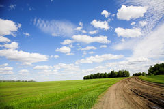 Field road Stock Photography