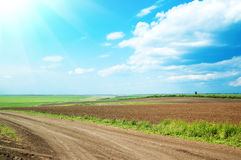 Field and road Stock Photography