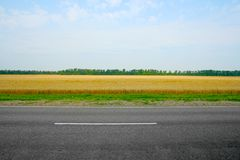Field and road Stock Images