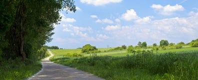 Field road Royalty Free Stock Photo