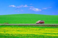 Field, road, car Stock Images