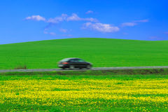 Field, road, car Stock Photography